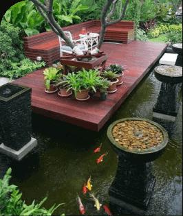 Kolam Koi Outdoor